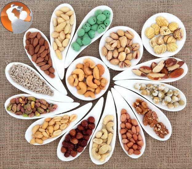 dinh dưỡng dành cho người tập thể hình