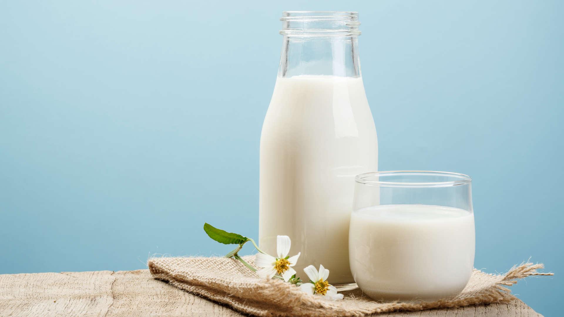 Uống sữa gì tăng cân hiệu quả nhất cho người gầy