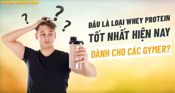 whey protein tot nhat hien nay 2
