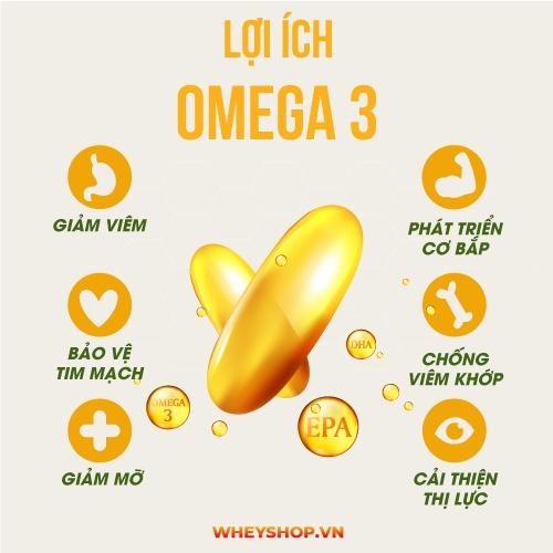 Now Omega 3 200 viên là sản phẩm nhập khẩu giá tốt . Now Omega 3 dầu cá có tác dụng gì ? . Omega dầu cá hỗ trợ cải thiện tim mạch bổ sung chất béo tốt .
