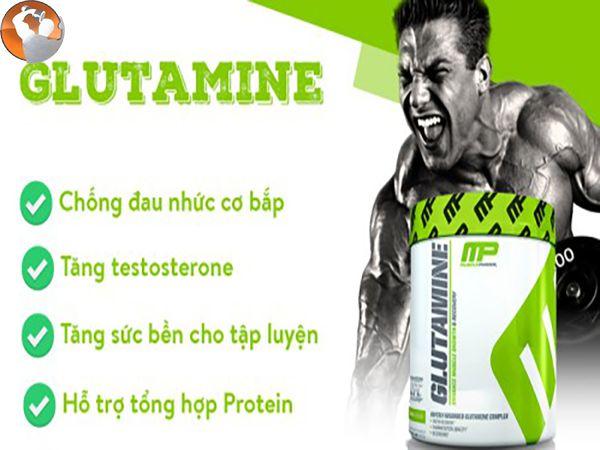 Glutamine là gì? Tại sao nó là thực phẩm bổ sung quan trọng nhất