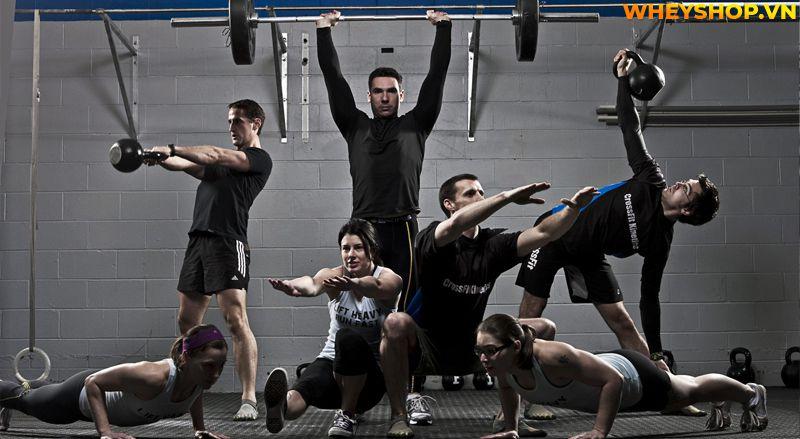 Crossfit là gì? Nói một cách đơn giản, Crossfit là một loại hình đào tạo sẽ giúp bạn mạnh mẽ hơn, săn chắc hơn và xây dựng cơ bắp trên một loạt các bài tập...