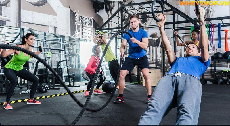 Tìm hiểu khái niệm Glutamine là gì ? Tìm hiểu về lợi ích, cách sử dụng và tác hại của Glutamine đối với người tập gym, tập thể hình.