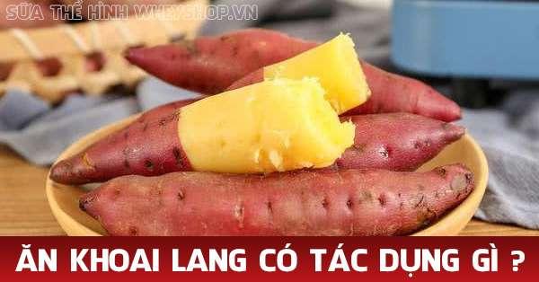 su that giam can bang khoai lang co tot khong tinh bot 600x314