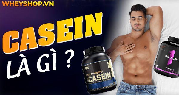Nếu bạn đang băn khoăn tìm hiểu Casein là gì thì hãy cùng WheyShop tham khảo chi tiết về lợi ích của Casein qua bài viết...