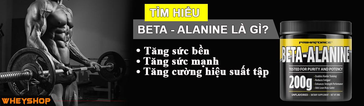 Beta ALANINE là gì