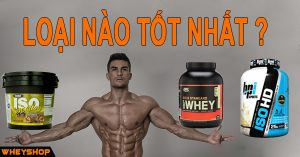 ISO HD Whey Gold, Iso 93