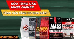Mass Gainer là gì ? Cách dùng và lợi ích sử dụng Mass Gainer hỗ trợ tăng cân tăng cơ 1