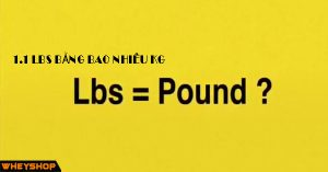 1.1lbs bằng bao nhiêu kg