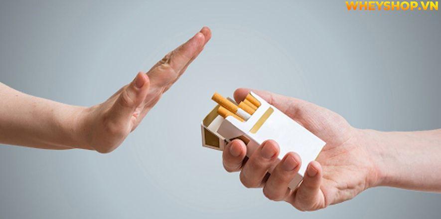 Nếu bạn đang thắc mắc bỏ thuốc lá có tăng cân không thì hãy cùng WheyShop tham khảo chi tiết bài viết ngay sau đây nhé...