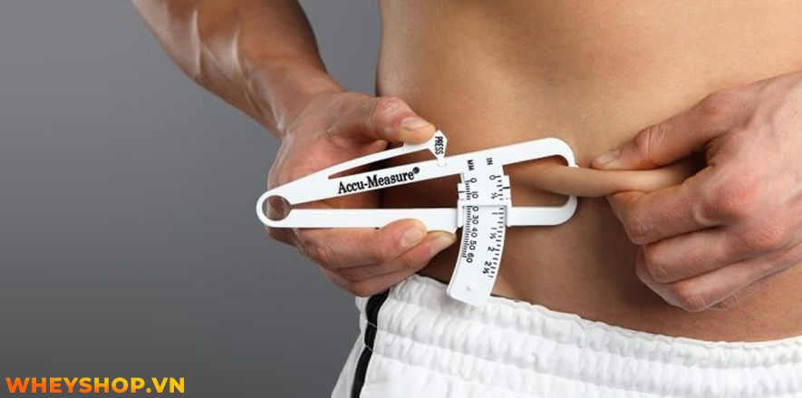 Nếu bạn đang băn khoăn tại sao ăn nhiều mà không béo thì hãy cùng WheyShop tham khảo nguyên nhân qua bài viết ngay sau đây nhé...