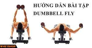 Hướng dẫn bài tập Dumbbell Fly