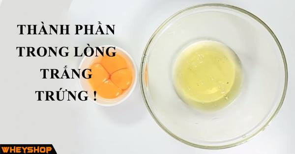 thanh phan dinh duong trong long