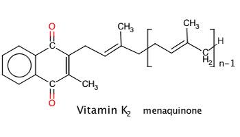Vitamin K2 - MK 7 la gi - wheyshop