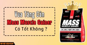 Vua tang can Mass Muscle Gainer co tot khong