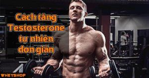 Cach tang hormone Testosterone nam tu nhien don gian Wheyshop