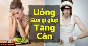 Uong Sua Gi Giup Tang Can WheyShop Vn