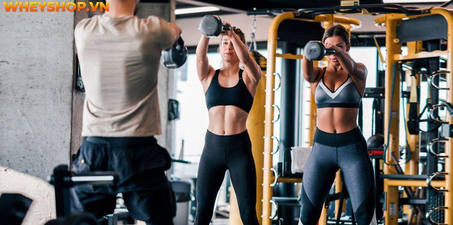 Nếu bạn đang băn khoăn có nên tập gym cả sáng và chiều thì hãy cùng WheyShop tìm hiểu chi tiết bài viết để giải đáp thắc mắc...