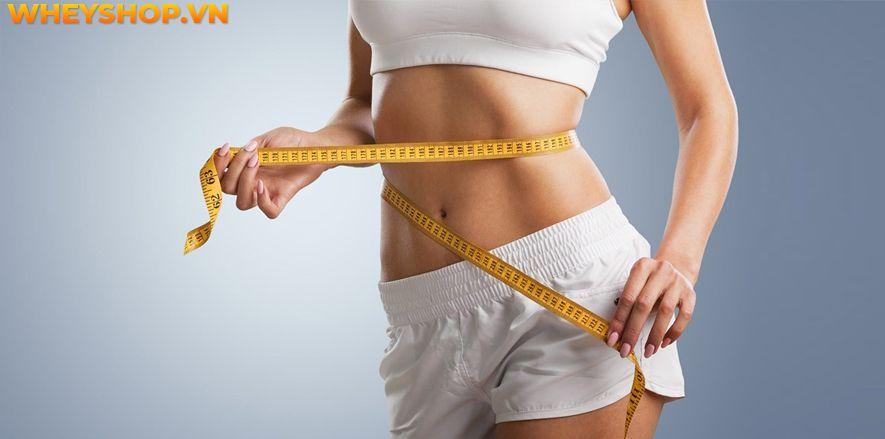 Nếu bạn đang băn khoăn Lắc vòng có giảm cân không? Lắc vòng bao lâu thì giảm eo thì hãy cùng WheyShop tham khảo chi tiết bài viết...