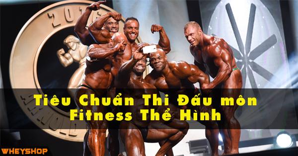 Cac hinh thuc tieu chuan thi dau cua mon fitness tren the gioi WHEYSHOP VN