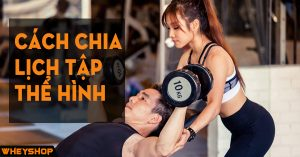Cach chia lich tap the hinh gym WHEYSHOP vn