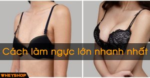 Cach lam Nguc Lon Nhanh Nhat WHEYSHOP VN