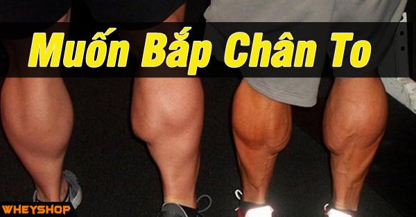 Muon Bap Chan To WHEYSHOP