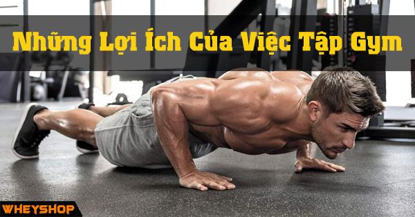 Nhung Loi Ich Cua Viec Tap Gym WHEYSHOP VN 22