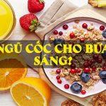 Ngu coc su lua chon tot nhat cho bua sang wheyshop vn 6
