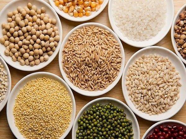 bột ngũ cốc cho người tập thể hình