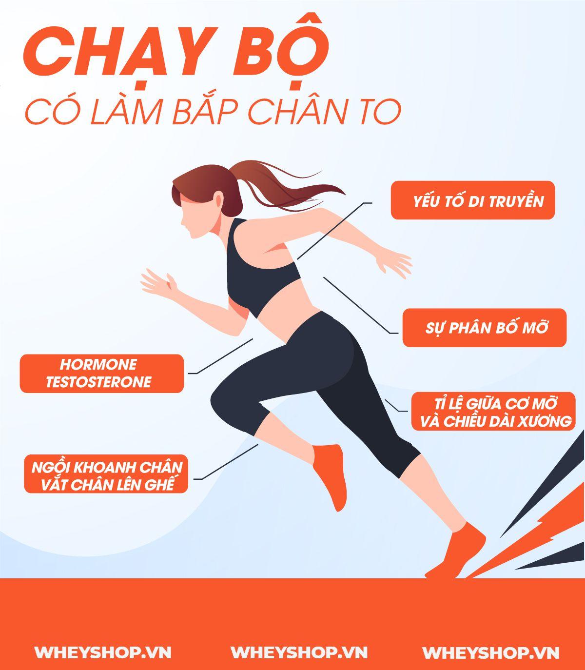 Nếu bạn đang băn khoăn thắc mắc về việc chạy bộ có làm to bắp chân không thì hãy cùng WheyShop tham khảo chi tiết ngay bài viết này...