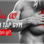Tại sao lại bị đau cơ sau khi tập gym và bị đau cơ sau khi tập gym bạn nên làm gì? Cùng WheyShop tìm hiểu cách giảm đau sau khi tập gym qua bài...