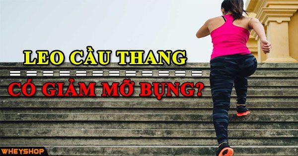Leo cầu thang có giúp giảm mỡ bụng không? Lợi ích của việc leo thang bộ có thể bạn chưa biết 1