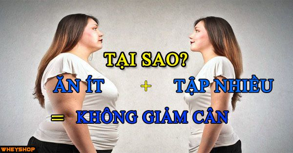 tai sao an it tap nhieu van khong giam can wheyshhop vn  compressed