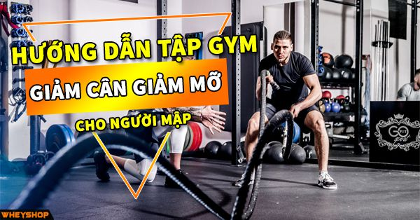 huong dan tap gym giam mo cho nguoi map wheyshop vn_compressed