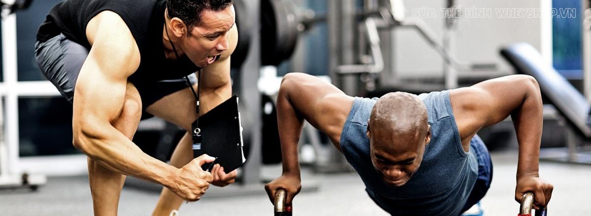 PT Gym hay còn gọi là Personal Trainer là những huấn luyện viên cá nhân chuyên nghiệp. Tiêu chuẩn để trở thành PT là gì, cùng tìm hiểu chi tiết qua bài viết sau
