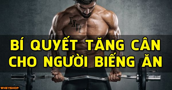 bi quyet tang can cho nguoi bieng an wheyshop_compressed