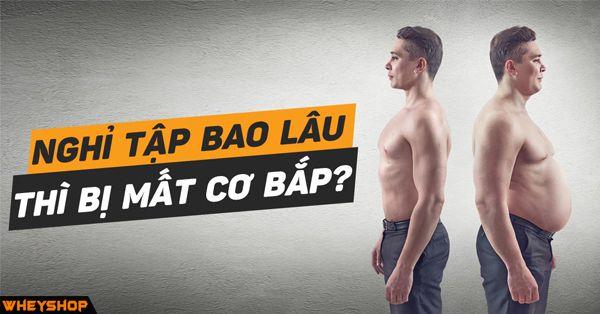 nghi tap bao lau thi mat co bap wheyshop vn compressed