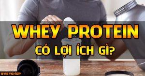 tac dung cua whey protein wheyshop vn
