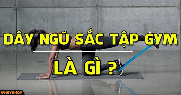 day ngu sac tap gym wheyshop vn_compressed