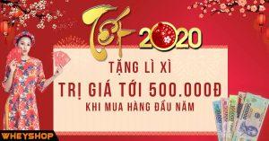 MỪNG XUÂN NĂM MỚI - HAPPY NEW YEAR 2020!! 1