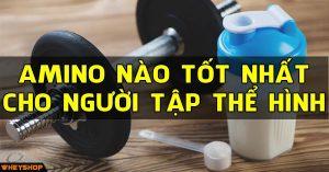 Hỏi đáp: amino nào tốt nhất đối với người tập thể hình 1