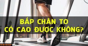 bap chan to co cao duoc khong wheyshop vn