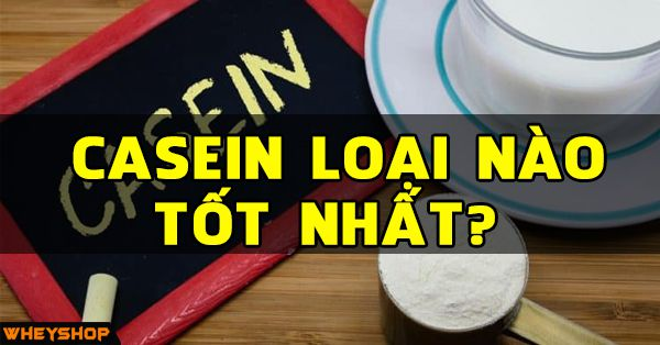 casein loai nao tot nhat wheyshop vn compressed