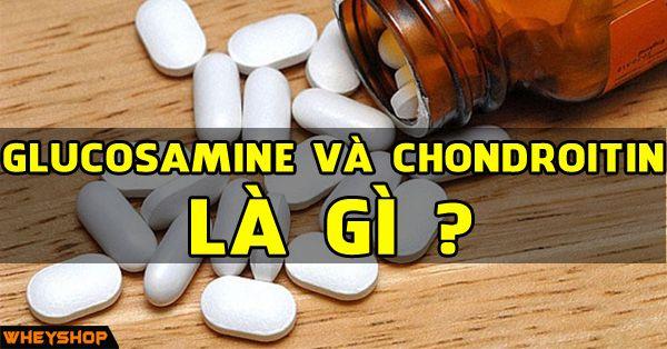 glucosamine va chondroitin la gi wheyshop vn