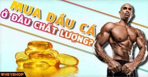 mua dau ca omega 3 o dau chat luong wheyshop vn