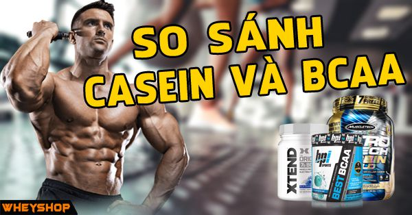 so sanh casein va bcaa wheyshop vn compressed