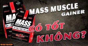 danh gia review elitelab mass muscle gainer co tot khong wheyshop vn