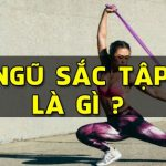day ngu sac dan hoi tap gym chinh hang wheyshop vn