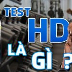test hd la gi wheyshop vn